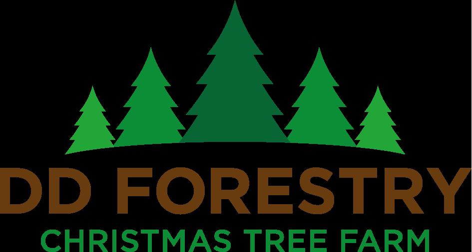 DD Forestry